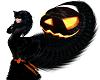 Halloween Kitty bundle