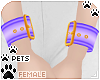 [Pets]Wristcuff | purple