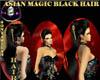 SM -ASIAN M BLACK HAIR