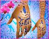 RC Indian Bridal Blue E