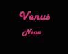 Neon venus