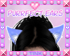 Purrfect | Blue Ears