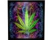 High Life pic w/smoke