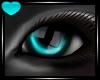 Wild Eyes ~Teal