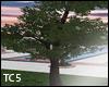 Animated tree 1