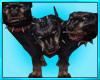 Cerberus  Battle Dog Pet