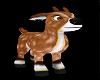 Reindeer fawn pet M/F