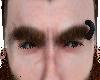 Log eyebrows