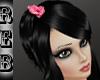 REB Chieu -BLACK-