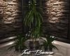 Just Because~ Trio Plant