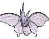 Animated Venomoth
