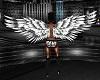 ATS~ Anim Snow Owl Wings