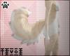 Tiv| Jaji Tail (M/F) V3