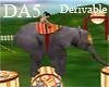 (A) Circus Elephant Show