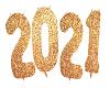 2021 YEAR