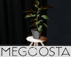 Potted Plant Stool