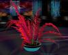[CI]Neon Club Plant 4
