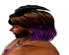 Brown Purple Josh 2