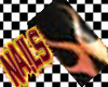 DB FunkyPunky Nail 1