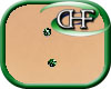 HFD Chest Surface Green