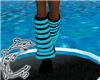 ~D~Blk/Blu Leg Warmers