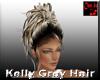 Kelly Grey Hair