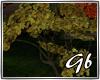 *Autumn*Trees
