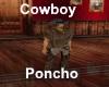 [BD]Cowboy Poncho