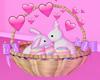 Bunnys Eggs♡