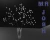 -CANDYLAND- plant light