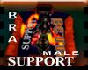 BRA Support  Varsity M