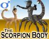 Scorpion Body -Male
