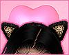 Spicy Headband