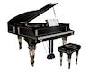 Piano Black/Gold