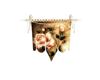 Rose Wedding Banner