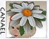 [CNL]Daisy hat