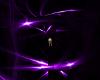 DJ Purple Rings L