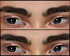brows 5/6