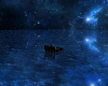 Under the moon derivable