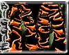 (Orange Cargos)