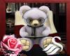 Bear student