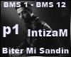 Biter Mi Sandin P1 |7