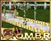 QMBR Rose Walkway YW