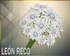 c Bouquet #1