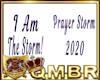 QMBR I Am the Storm DS