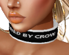 Collar Owned By Crow