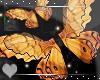 Butterfly -Wall Decor