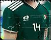 Mexican Fan 18