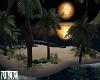 Midnight Isle