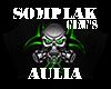 Somplak Geng's Aulia